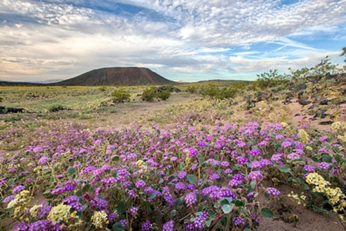 Amboy Crater among newest additions to National Trail System