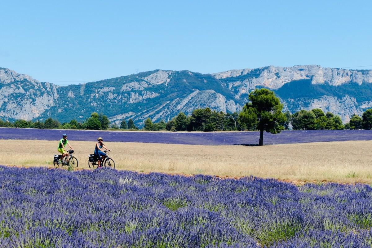Couple à vélo sur les Routes de la lavande
