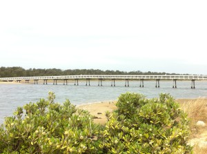 A walking-bridge to the dunes, Lakes Entrance, Australia South East Coast