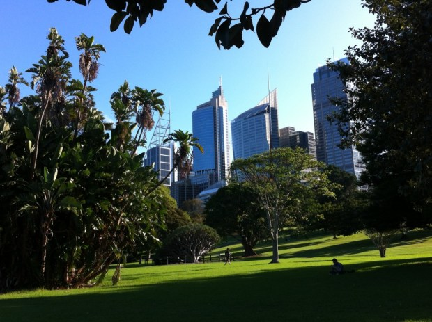 Sydney walking itinerary: Royal Botanic Gardens