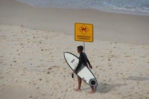 Walking along the beach, Sydney