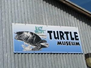 Turtle Museum, Key West