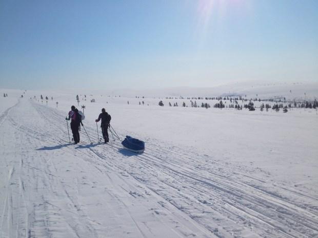 Ski tour in Lapland wilderness, Finland