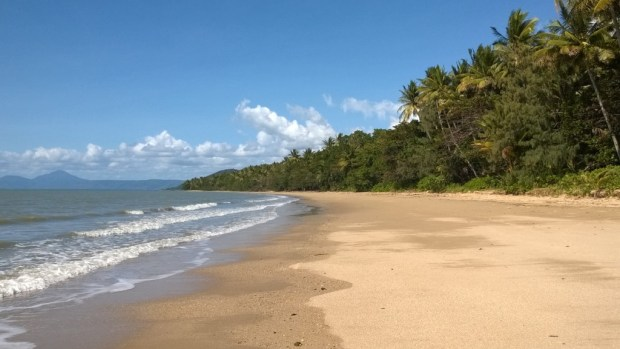Wonga Beach, Daintree National Park