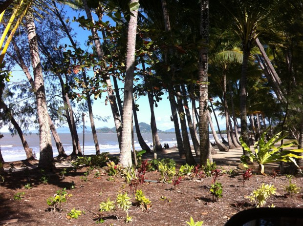 Palm Cove, Cairns to Daintree
