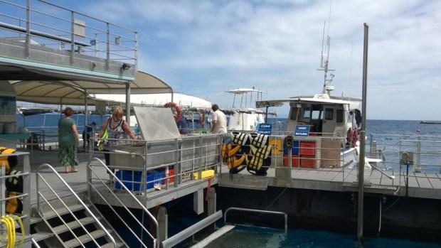 Agincourt Reef pontoon
