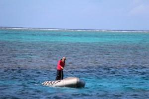 Barrier Reef lifeguard