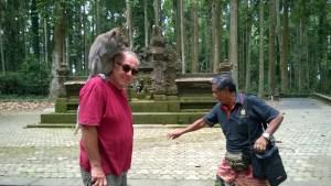 Bali day trip by car, Sangeh Monkey Forest