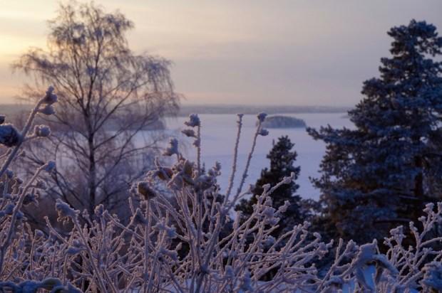Pispala view, Tampere winter walk