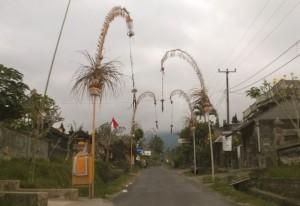 Bali day trip by car: driving through a Bali village