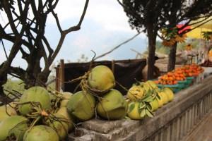 Mt. Batur fruits