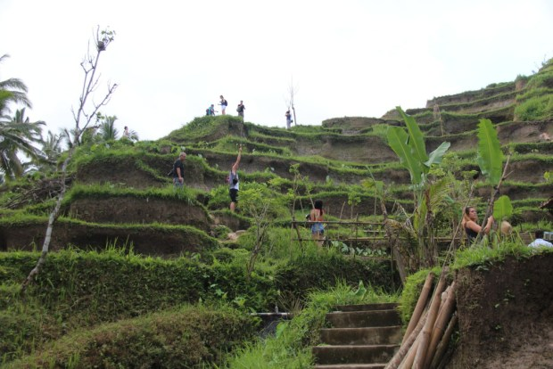 Walking on Tegallalang rice terraces