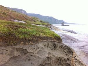 Punakaiki beach sandstones