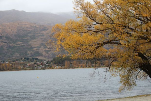 West Coast to Queenstown autumn colours