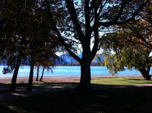 Wanaka lakeshore