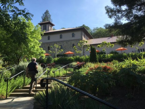 Visiting one of the many Napa Valley wineries