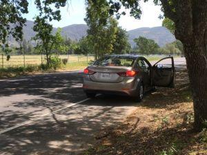 Touring Napa Valley vineyards California