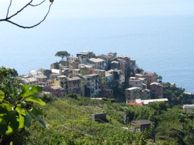 Hiking Cinque Terre trails, Corniglia