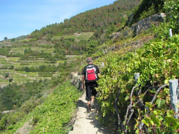 Hiking Cinque Terre Trails, winding path