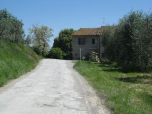 Tuscany Scenic Drive San Gimignano country walk