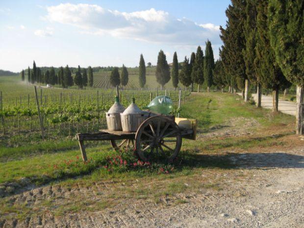 Tuscany scenic drive wine