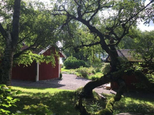 Stockholm Djurgården garden