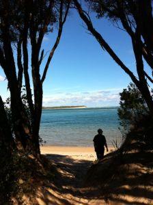 Exploring a beach