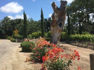 Ynez Valley winery entrance