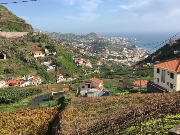 Places to travel at different times of the year, Madeira