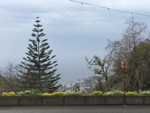 Monte, Madeira: view to Funchal