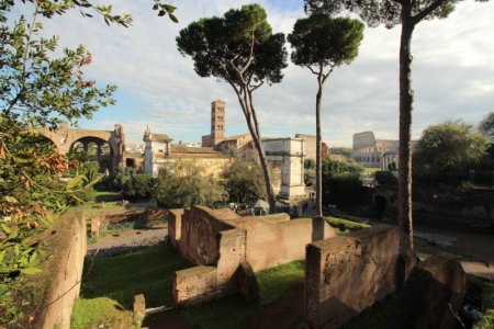 Roman Forum ruins, Rome