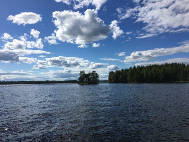 Osprey nest on a Lake Konnevesi island