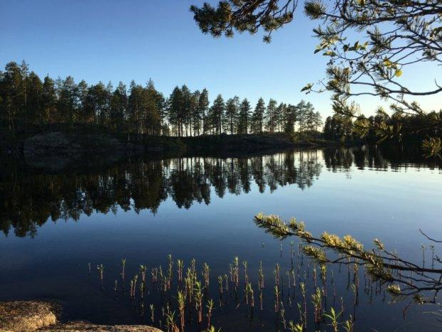 Southern Konnevesi National Park lake view