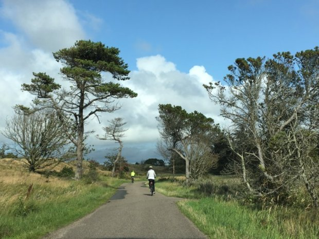 Biking route in North Jutland, Denmark
