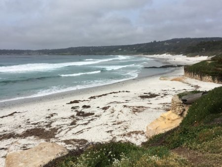 Carmel-by-the-Sea sandy beach