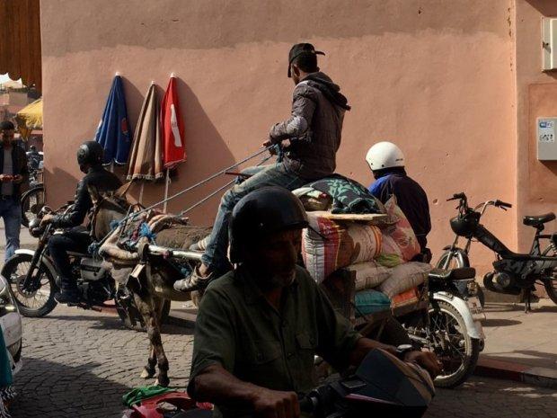 Marrakech Mellah traffic jam