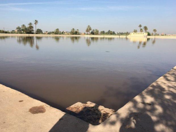 Menara Gardens artificial lake