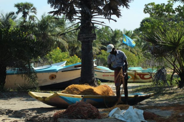Kalpitiya fisherman