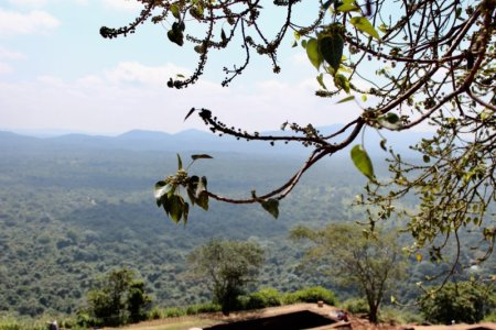 Cultural Triangle landscape from Sigiriya Rock