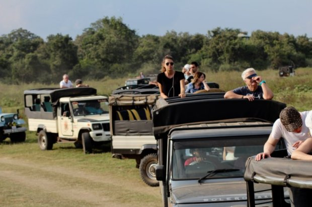Kaudulla National Park visitors in jeeps