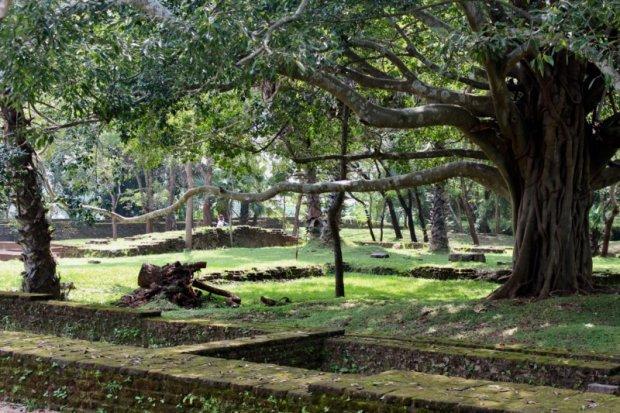Polonnaruwa ruins