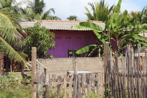 Sri Lankan pink house