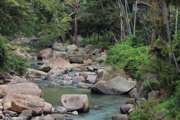 A river, Sri Lanka tea country