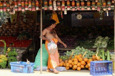 Man and fruit stall, Sri Lanka's South Coast
