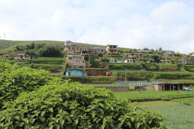 Homes and gardens near Nuwara Eliya, Sri Lanka