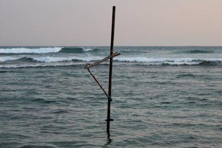 Stilt-fishing pole Sri Lanka