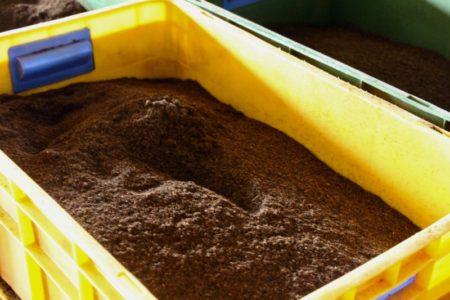 Tea powder in tea factory