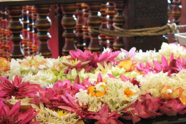 Temple of the Tooth offerings