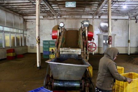 Working in Sri Lankan tea factory