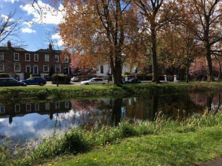 Canal side houses, Dublin
